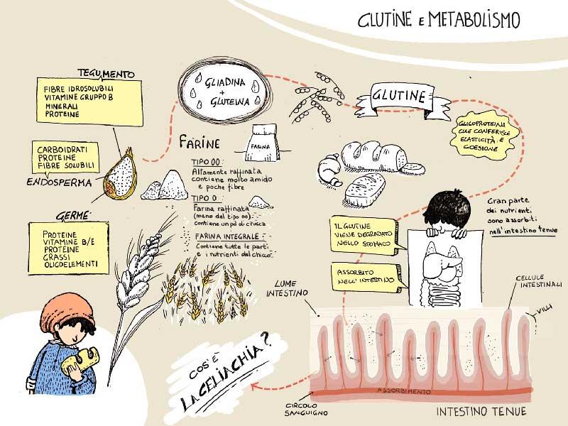Lo sapete cosa è la celiachia? - Illustrazione di Dania Puggioni